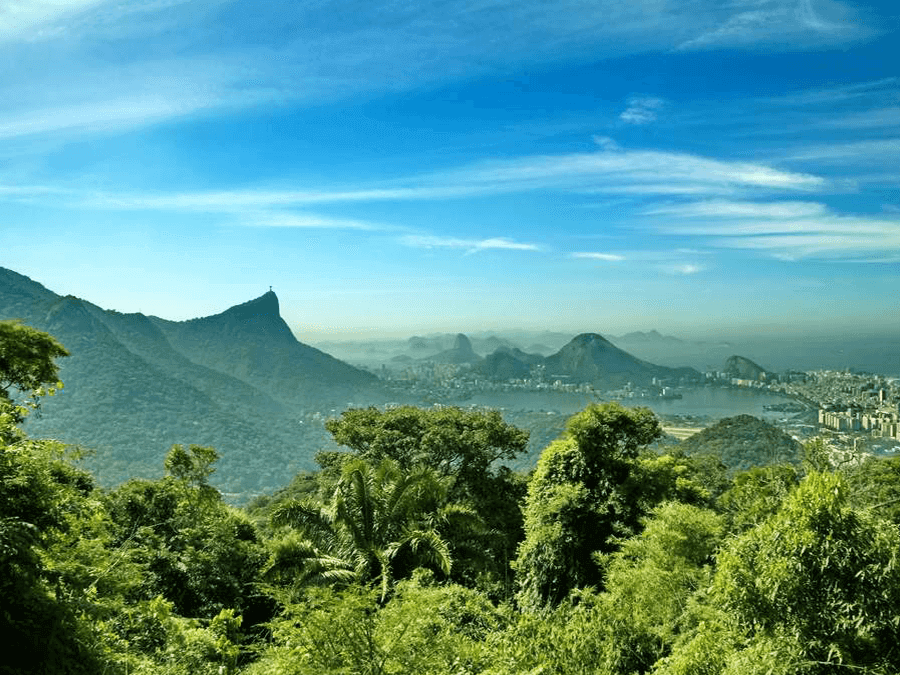 Tijuca Rainforest and Botanical Gardens