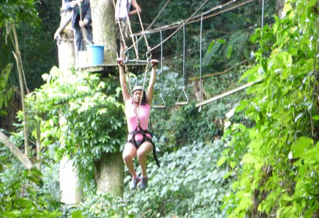 Zip Line & Tree Top Canopy Tours